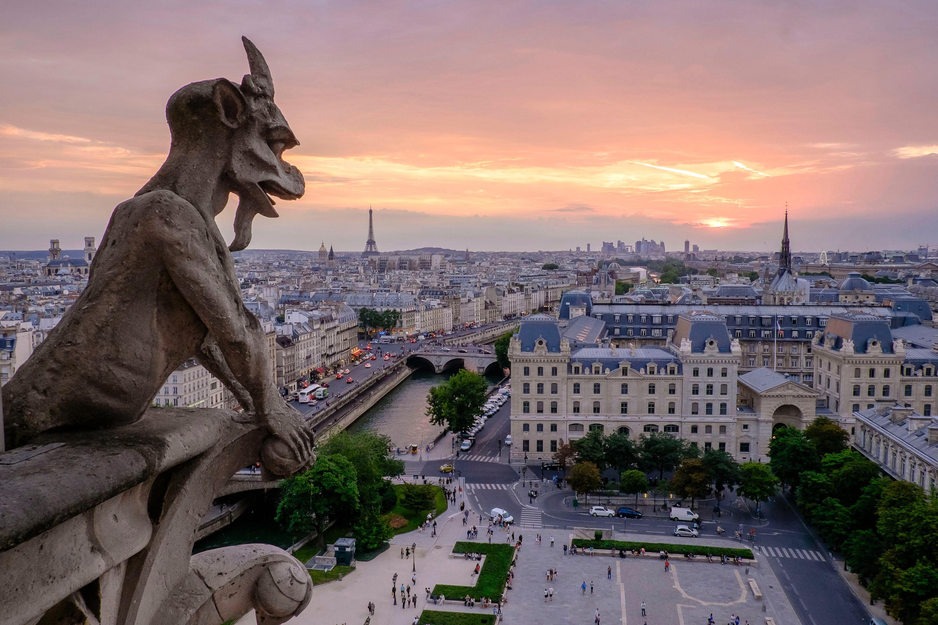 Pogled na Pariz sa vrha Notr Dama
